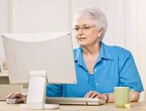 Woman looking at computer monitor. Senior woman looking at computer monitor and typing on keyboard Stock Photos