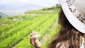 Woman looking at field of vine plants on hill stock footage