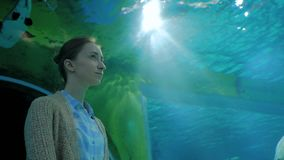 Woman looking at fish in large public aquarium tank at Oceanarium. Portrait of woman looking at fish in large public aquarium tank at Oceanarium. Tourism stock footage