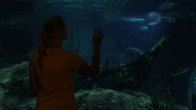 Woman looking at fish in oceanarium. Huge aquarium with different fish and old boat. Woman coming to see the beauty of undersea world stock video footage