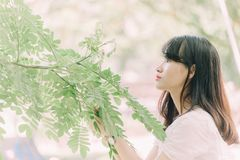 Woman Looking at Green Leaves of a Tree stock photo