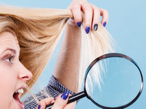 Woman looking at hair through magnifying glass Royalty Free Stock Image