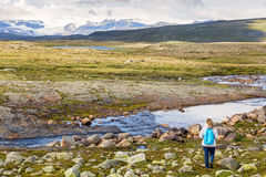 Woman looking at the Hardangervidda National Park Royalty Free Stock Photo
