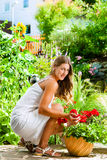 Woman looking at her flowers in the garden Royalty Free Stock Photography