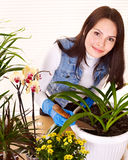 Woman looking after houseplant Stock Photo