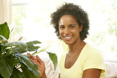 Woman Looking After Houseplant At Home Stock Photography