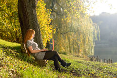 Woman looking at laptop in the park stock photo