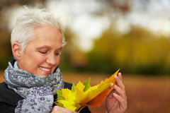 Woman looking at maple leaves Stock Photo