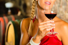 Woman looking at red wine glass in cellar. Woman keeping wine glass in hand in the background wine barrel in wine cellar Royalty Free Stock Photo