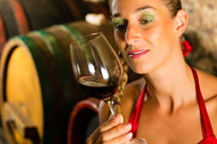 Woman looking at red wine glass in cellar. Woman keeping wine glass in hand in the background wine barrel in wine cellar Stock Photography