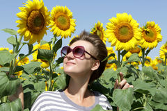 Woman looking at sunflowers Stock Photography