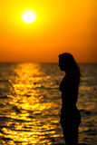 Woman looking at sunset Royalty Free Stock Photos