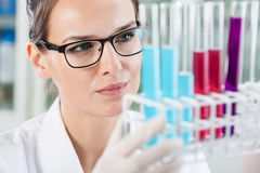 Woman looking at test tubes Royalty Free Stock Photo
