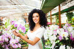 Woman looking to orchids Royalty Free Stock Images