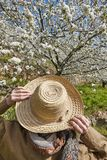 Woman looking up cherry blossom in Jerte Valley, Caceres. Spain. Season Royalty Free Stock Photography