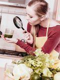 Woman looking at vegetable juice through magnifying glass. Drinks good for health, diet breakfast concept. Young woman in kitchen holding green healthy vegetable royalty free stock photography
