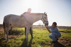 Woman looking at vet examining horse in barn Stock Photography