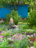 Woman looks after behind plants in the garden Stock Photography
