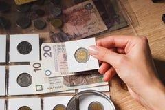 Woman looks at the Polish Zloty Royalty Free Stock Image
