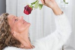 Woman looks at rose Stock Photos