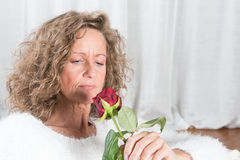 Woman looks at rose Stock Photos