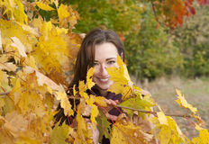 woman looks through yellow  leaves Stock Photography