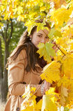 Woman looks through yellow  leaves Royalty Free Stock Photo