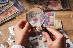 Woman looks at the Zloty through a magnifying glass Royalty Free Stock Images