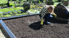 Woman loosen grave ground Royalty Free Stock Images