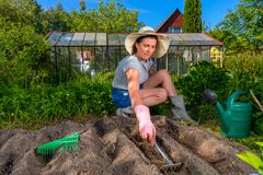 Woman loosens the soil for planting seeds, using small garden ra Stock Photography