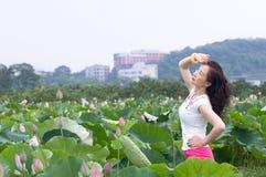 Woman in lotu fields Stock Image
