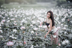 Woman with lotus. Picture of beautiful woman with lotus flower,young woman relaxing with beautiful lotus flower field Royalty Free Stock Image