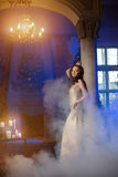 Woman in lux dress with crown like queen, princess, lights party Stock Photography