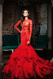 Woman in a Luxurious Red Dress Royalty Free Stock Photos