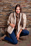 Woman in Luxury chinchilla fur coat Royalty Free Stock Photography