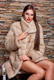 Woman in Luxury chinchilla fur coat Stock Photos