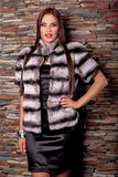 Woman in Luxury chinchilla fur coat Royalty Free Stock Photos