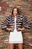 Woman in Luxury chinchilla fur coat Royalty Free Stock Photo