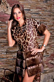 Woman in Luxury fur coat color giraffe Stock Photos