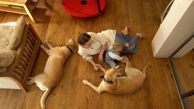 Woman lying on floor with her little son boy and two best friends dogs. Handheld. Woman lying on floor with her little son boy and two best friends dogs pets stock video footage