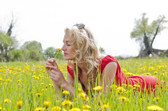 Woman lying in a meadow Stock Image