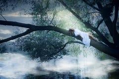 Woman lying on a tree Stock Photos