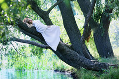 Woman lying on a tree Stock Photography