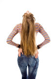Woman and magnificent hair. Young woman and magnificent hair back over white background Stock Photography