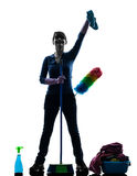 Woman maid housework cleaning products silhouette Royalty Free Stock Photography