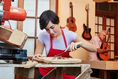 Woman makes carpenter apprenticeship. In guitar workshop royalty free stock images