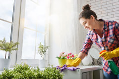Woman makes cleaning Royalty Free Stock Images
