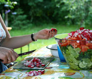 Woman makes salad. Woman slices vegetable with knife for mixed salad Stock Photo
