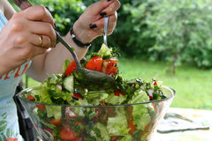 Woman makes salad Royalty Free Stock Image