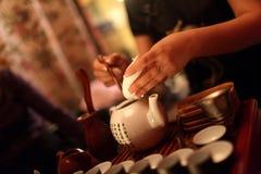 Woman makes tea Stock Image
